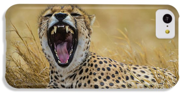 Africa Tanzania Cheetah (acinonyx IPhone 5c Case