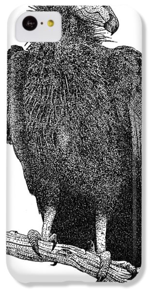 California Condor IPhone 5c Case