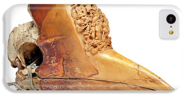 Carved Hornbill Skull IPhone 5c Case