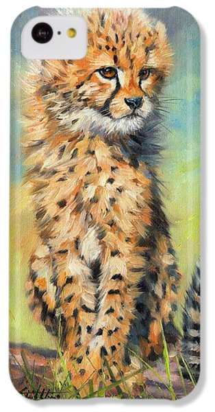Cheetah iPhone 5c Case - Cheetah Cub by David Stribbling
