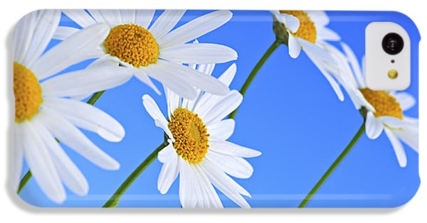 Daisy Flowers On Blue Background IPhone 5c Case by Elena Elisseeva