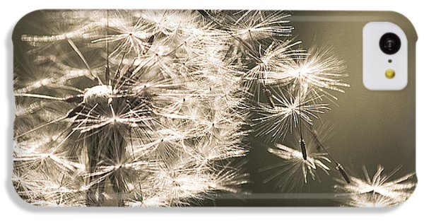 Dandelion IPhone 5c Case