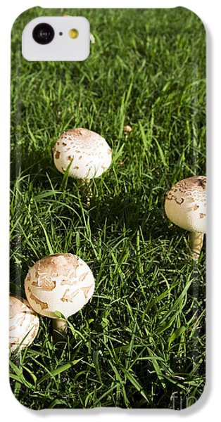 Field Of Mushrooms IPhone 5c Case by Jorgo Photography - Wall Art Gallery