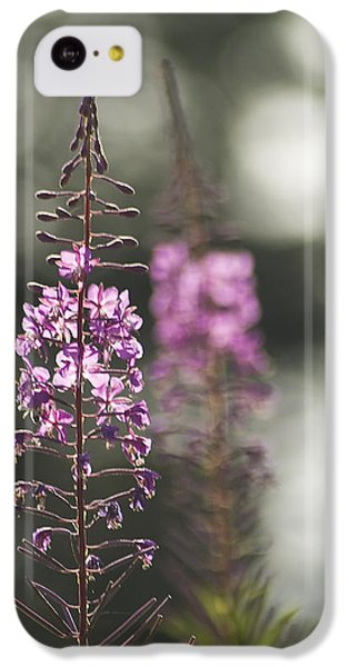 IPhone 5c Case featuring the photograph Fireweed by Yulia Kazansky