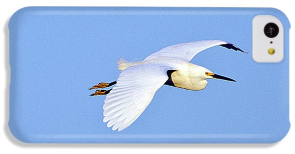 Florida, Venice, Snowy Egret Flying IPhone 5c Case by Bernard Friel