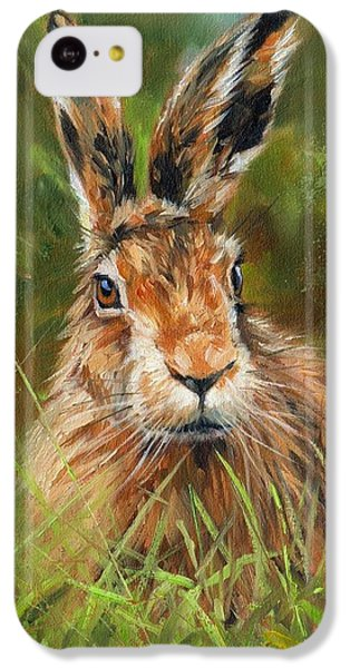 hARE IPhone 5c Case by David Stribbling