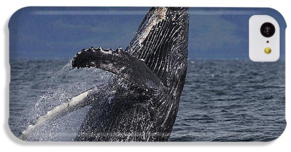 Humpback Whale Breaching Prince William IPhone 5c Case by Hiroya Minakuchi