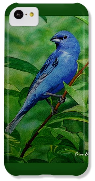 Indigo Bunting IPhone 5c Case by Ken Everett