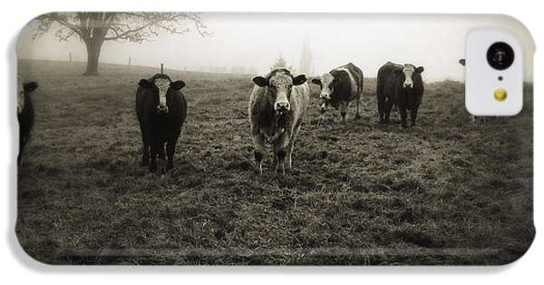 Rural Scenes iPhone 5c Case - Livestock by Les Cunliffe