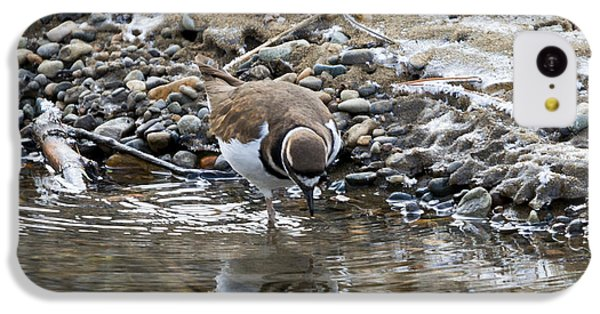 Killdeer iPhone 5c Case - Mirror Mirror by Mike Dawson
