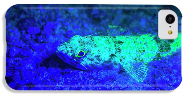 Belize iPhone 5c Case - Night Dive At Barrier Reef, Saint by Stuart Westmorland