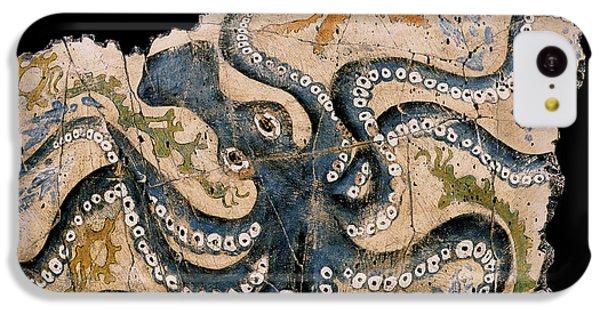 Octopus IPhone 5c Case