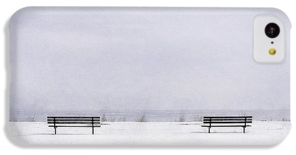 Lake Michigan iPhone 5c Case - Old Friends by Scott Norris