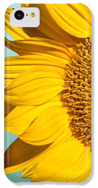 Sunflower IPhone 5c Case by Mark Ashkenazi