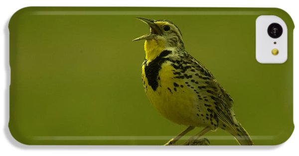 The Meadowlark Sings IPhone 5c Case