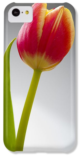 Tulip IPhone 5c Case by Sebastian Musial