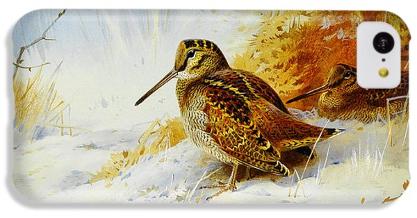 Winter Woodcock  IPhone 5c Case by Celestial Images
