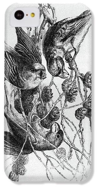Blackburn Birds, 1895 IPhone 5c Case