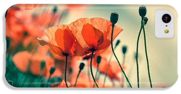 Poppy Meadow IPhone 5c Case by Nailia Schwarz
