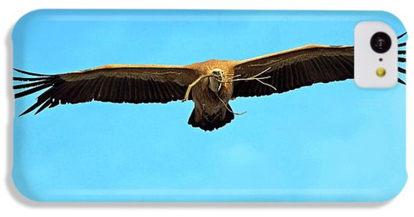 Griffon iPhone 5c Case - Griffon Vulture In Flight by Bildagentur-online/mcphoto-schaef