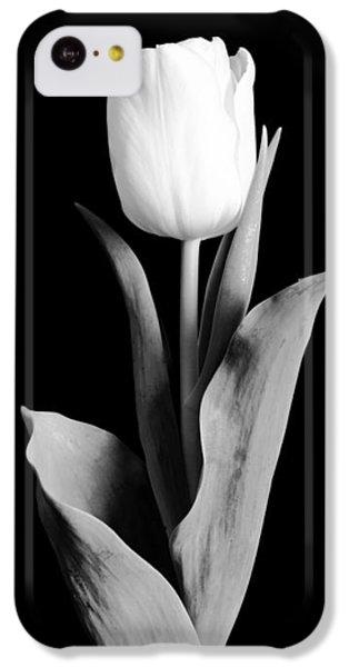 Garden iPhone 5c Case - Tulip by Sebastian Musial