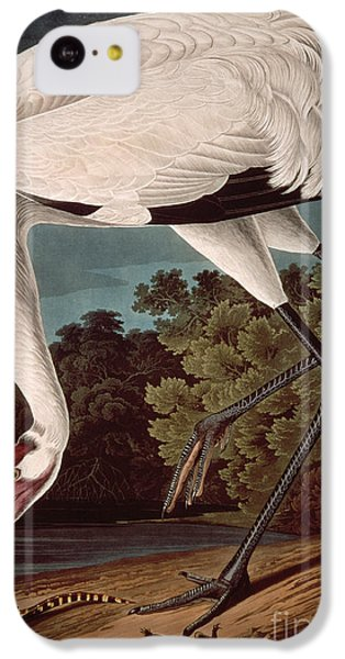 Whooping Crane IPhone 5c Case by John James Audubon