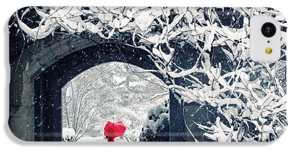 Winter's Lace IPhone 5c Case by Jessica Jenney