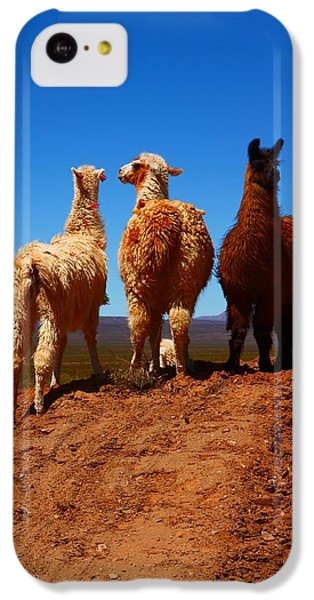 Llama iPhone 5c Case - 3 Amigos by FireFlux Studios