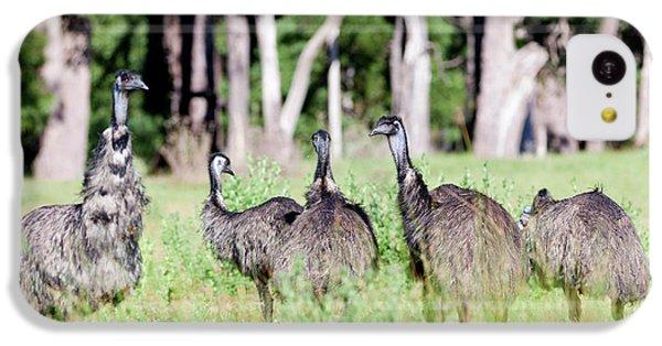 Emu (dromaius Novaehollandiae IPhone 5c Case by Martin Zwick
