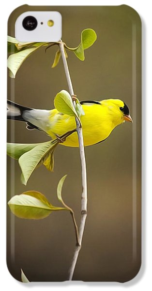 Finch iPhone 5c Case - American Goldfinch by Christina Rollo