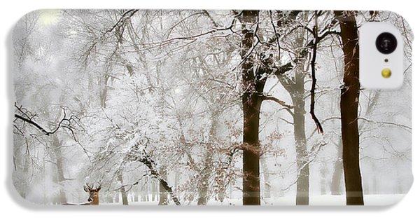 Winter's Breath IPhone 5c Case