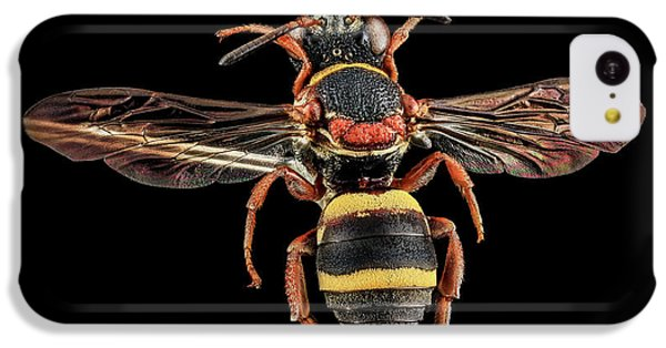 Cuckoo iPhone 5c Case - Cuckoo Bee by Us Geological Survey