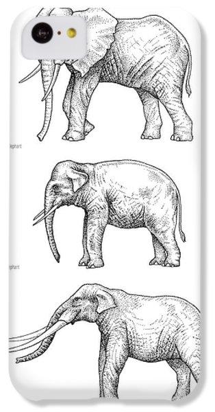 Elephant Evolution, Artwork IPhone 5c Case by Gary Hincks