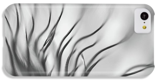 Flow iPhone 5c Case - Untitled by Keren Or