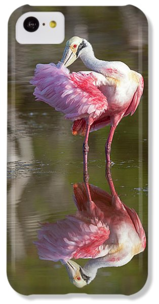 Usa, Florida, Everglades National Park IPhone 5c Case by Jaynes Gallery