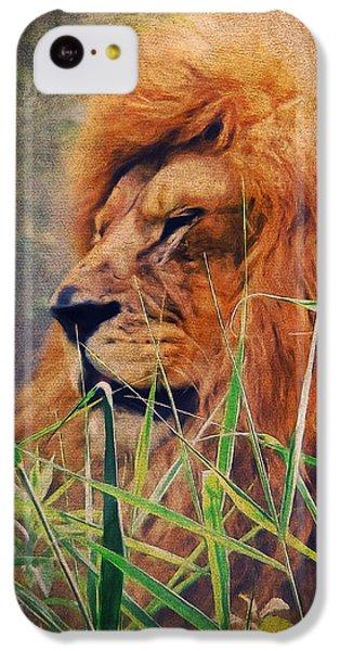 A Lion Portrait IPhone 5c Case