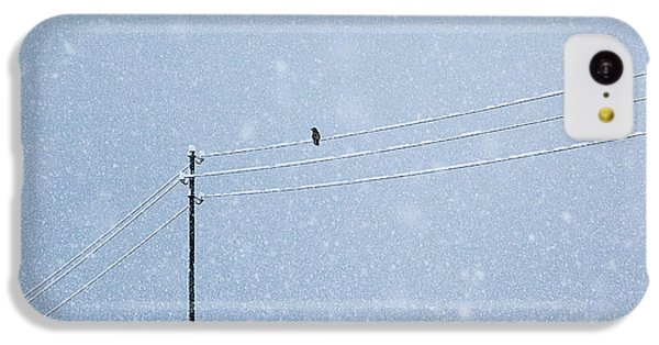 Raven iPhone 5c Case - A Long Day In Winter by Uschi Hermann
