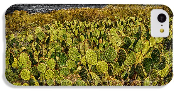 IPhone 5c Case featuring the photograph A Prickly Pear View by Mark Myhaver