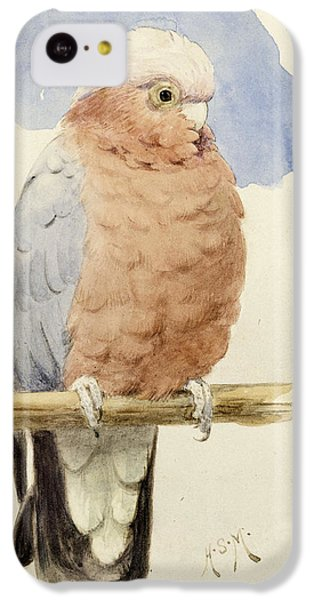 Cockatoo iPhone 5c Case - A Rose Breasted Cockatoo by Henry Stacey Marks
