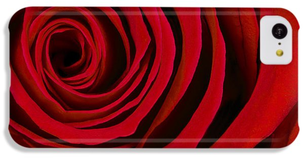A Rose For Valentine's Day IPhone 5c Case by Adam Romanowicz