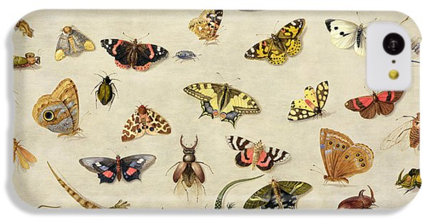 Grasshopper iPhone 5c Case - A Study Of Insects by Jan Van Kessel