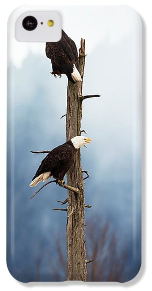 Adult Bald Eagles  Haliaeetus IPhone 5c Case by Doug Lindstrand