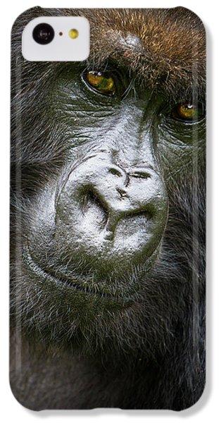 Africa Rwanda Female Mountain Gorilla IPhone 5c Case by Ralph H. Bendjebar