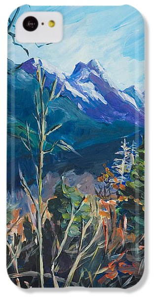 Alaska Autumn IPhone 5c Case