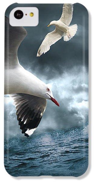 Albatross IPhone 5c Case