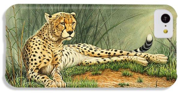 Cheetah iPhone 5c Case - Alert Repose  - Cheetah by Paul Krapf
