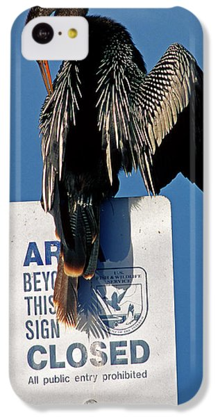Anhinga Perched On A Signpost IPhone 5c Case