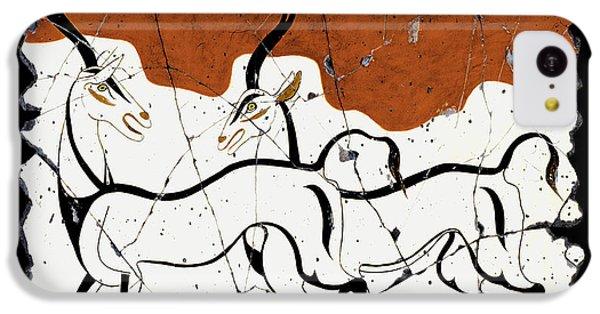 Antelope Of Akrotiri IPhone 5c Case