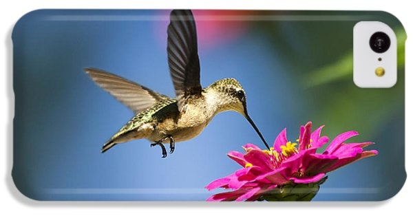 Art Of Hummingbird Flight IPhone 5c Case