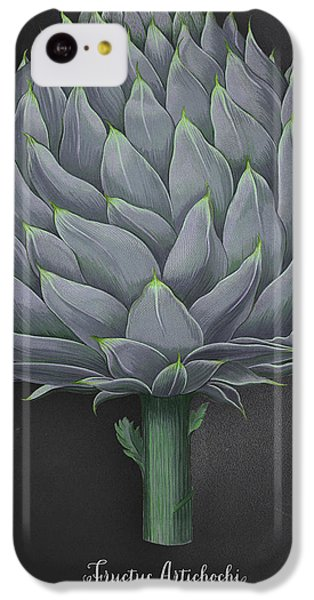 Artichoke Kitchen Art Print IPhone 5c Case